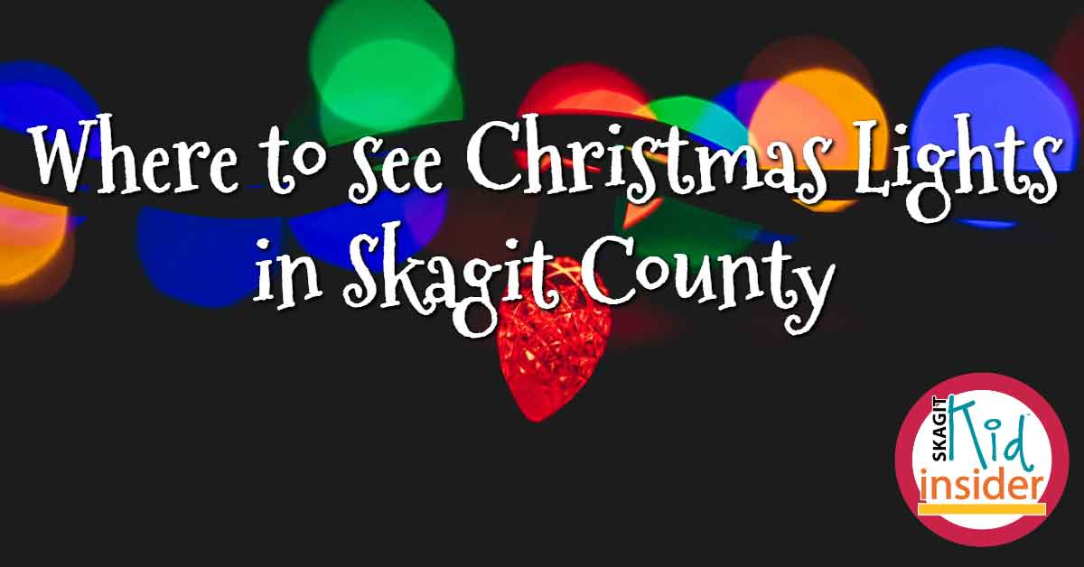 Skagit County Christmas Lights