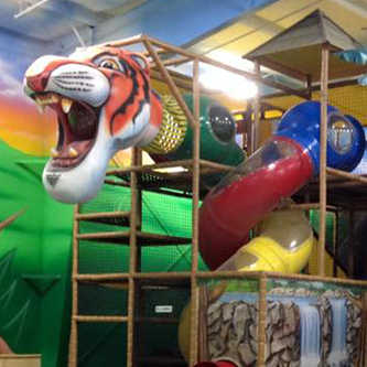 Jungle Playland Related
